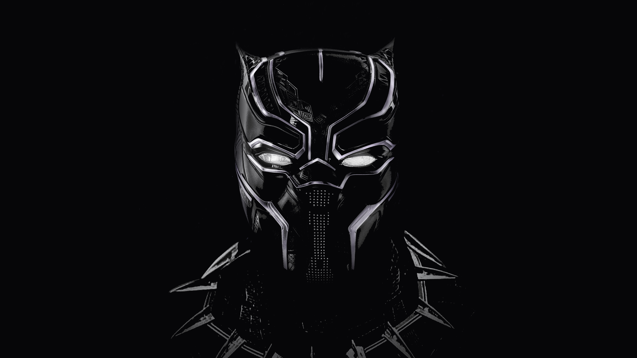 2560x1440 Black Panther Artwork 5k 1440p Resolution Hd 4k Wallpapers