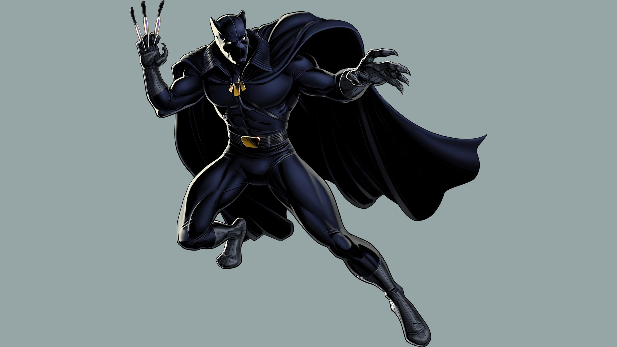 2560x1440 black panther fictional superhero 2 1440p resolution hd 4k