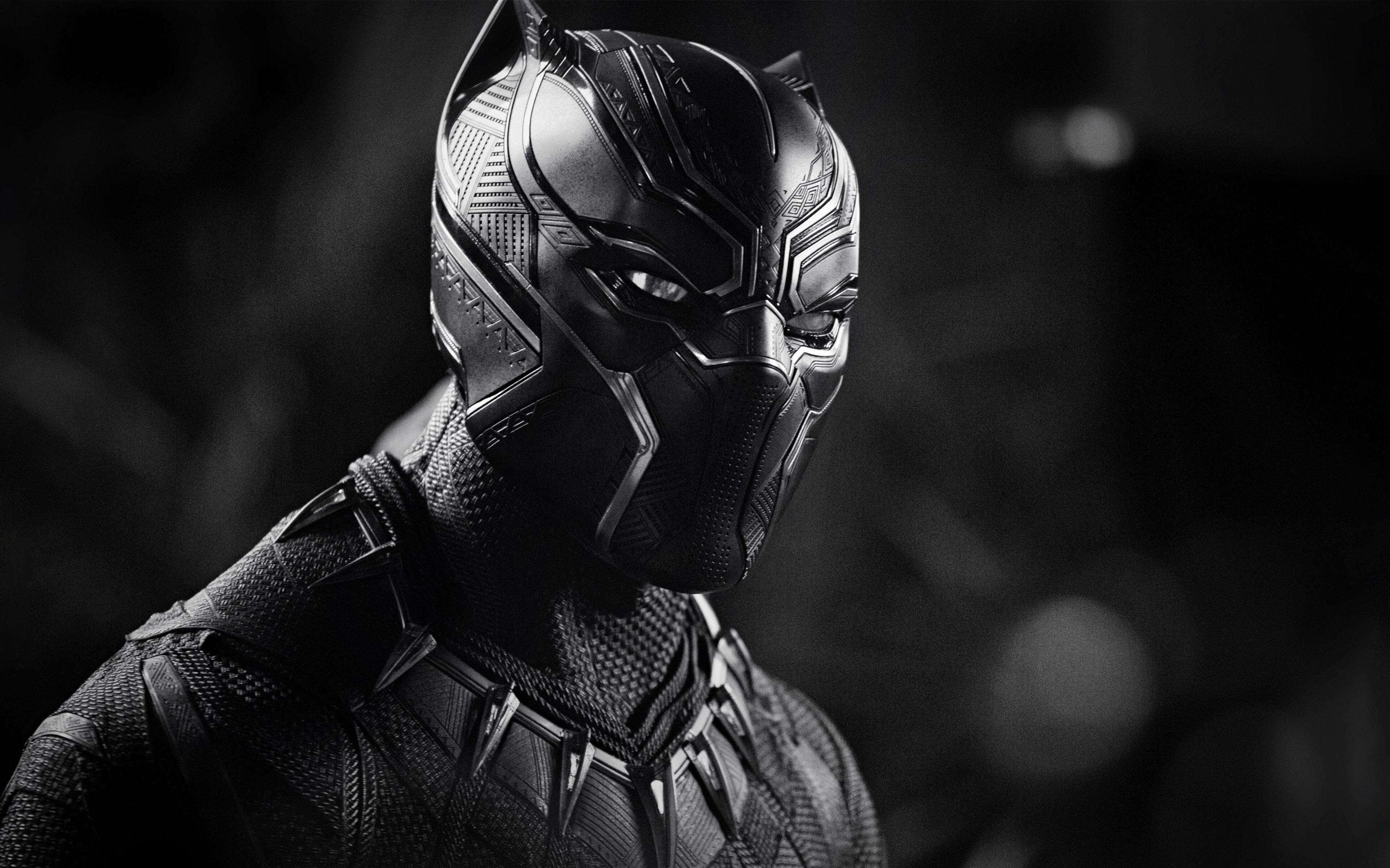 black-panther-monochrome-4k-19.jpg