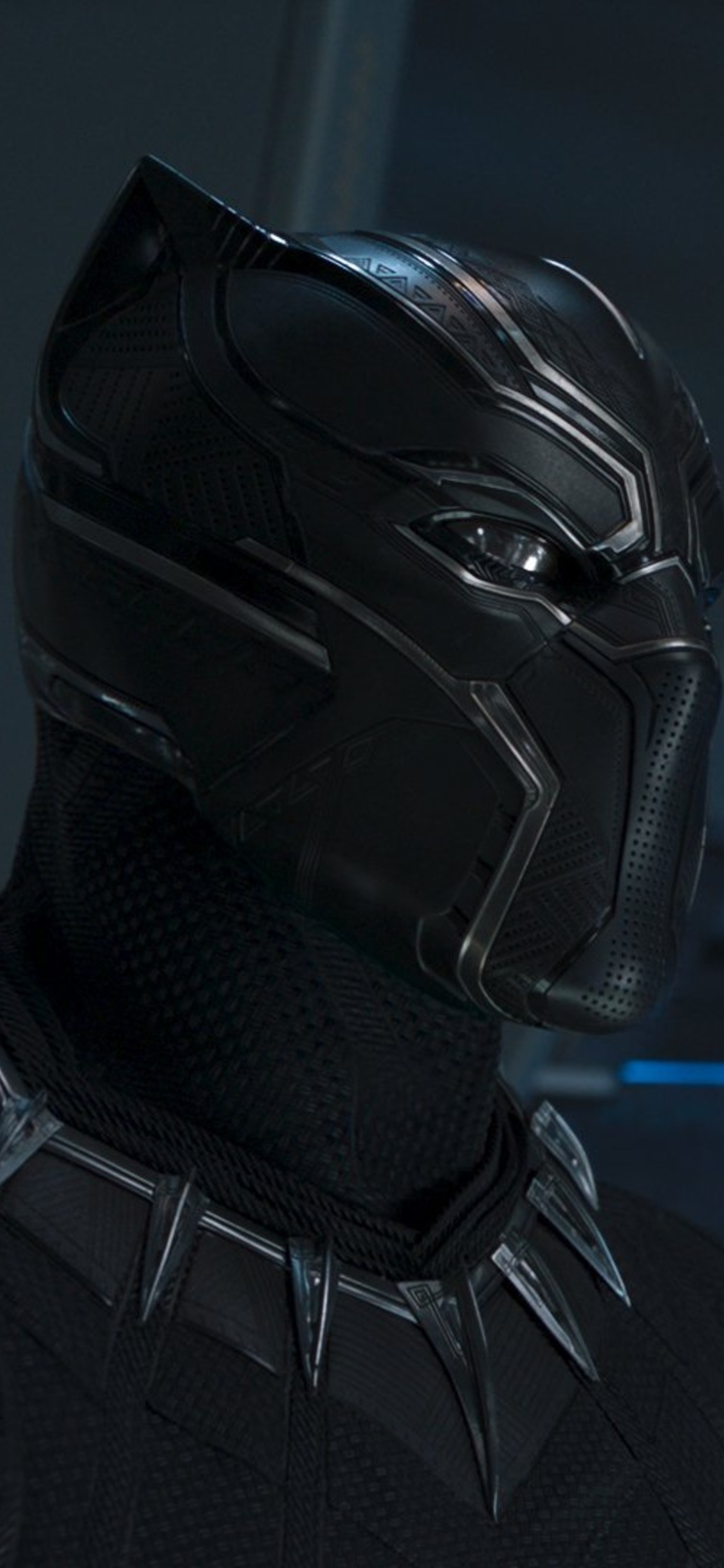1125x2436 Black Panther Movie 2018 HD Iphone XS,Iphone 10 ...