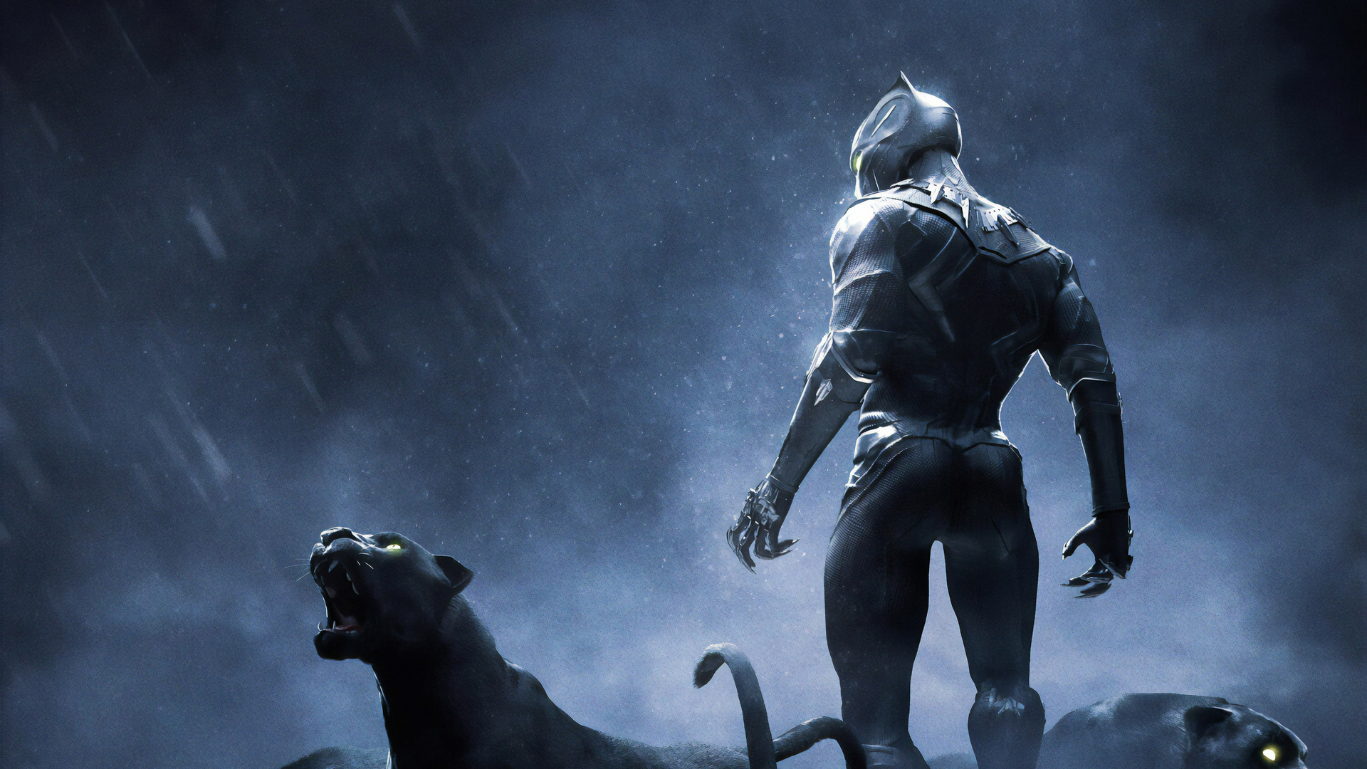 1920x1080 Black Panther Rise Up 4k Laptop Full HD 1080P HD ...