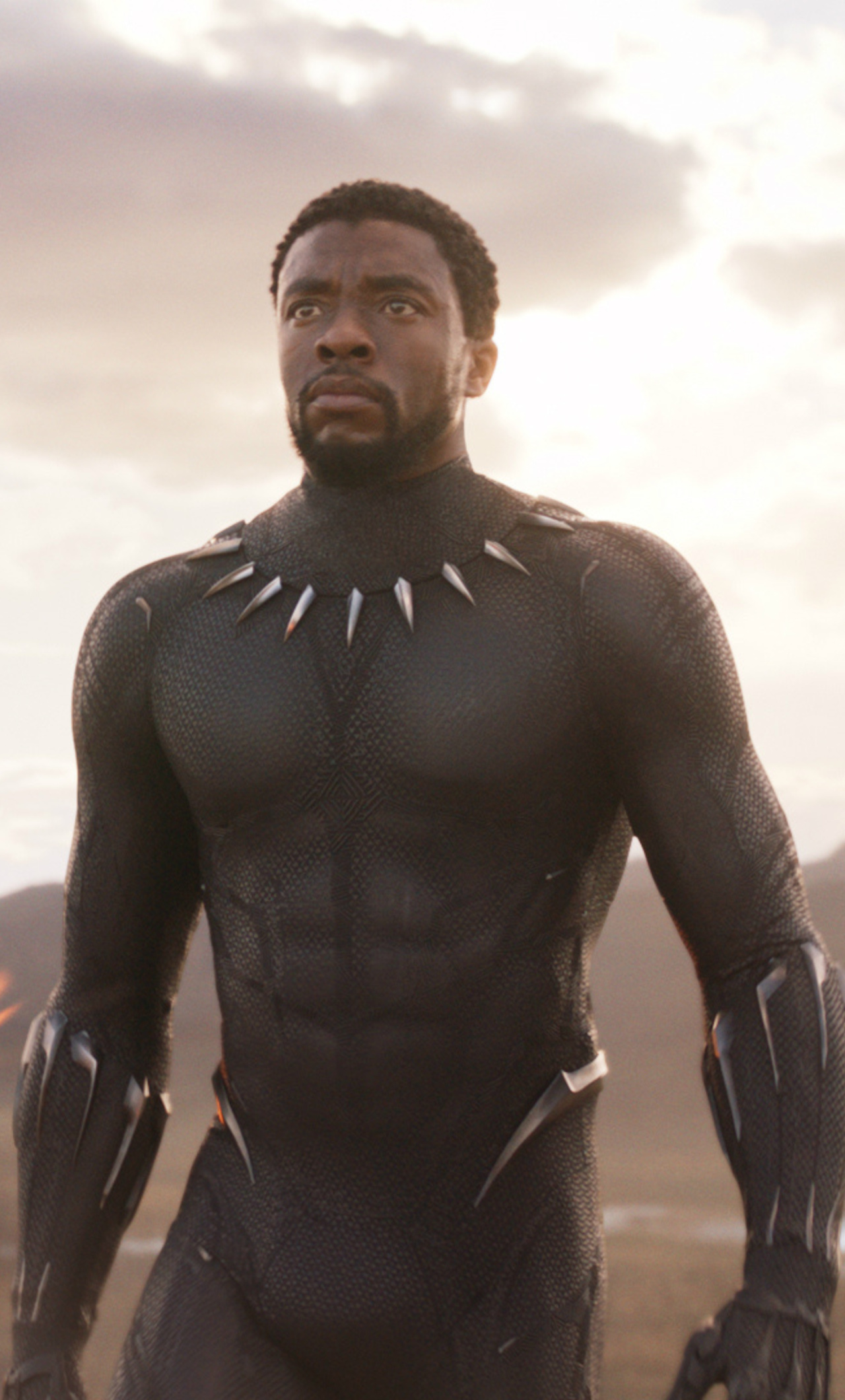 1280x2120 Black Panther T Challa 2018 iPhone 6+ HD 4k ...