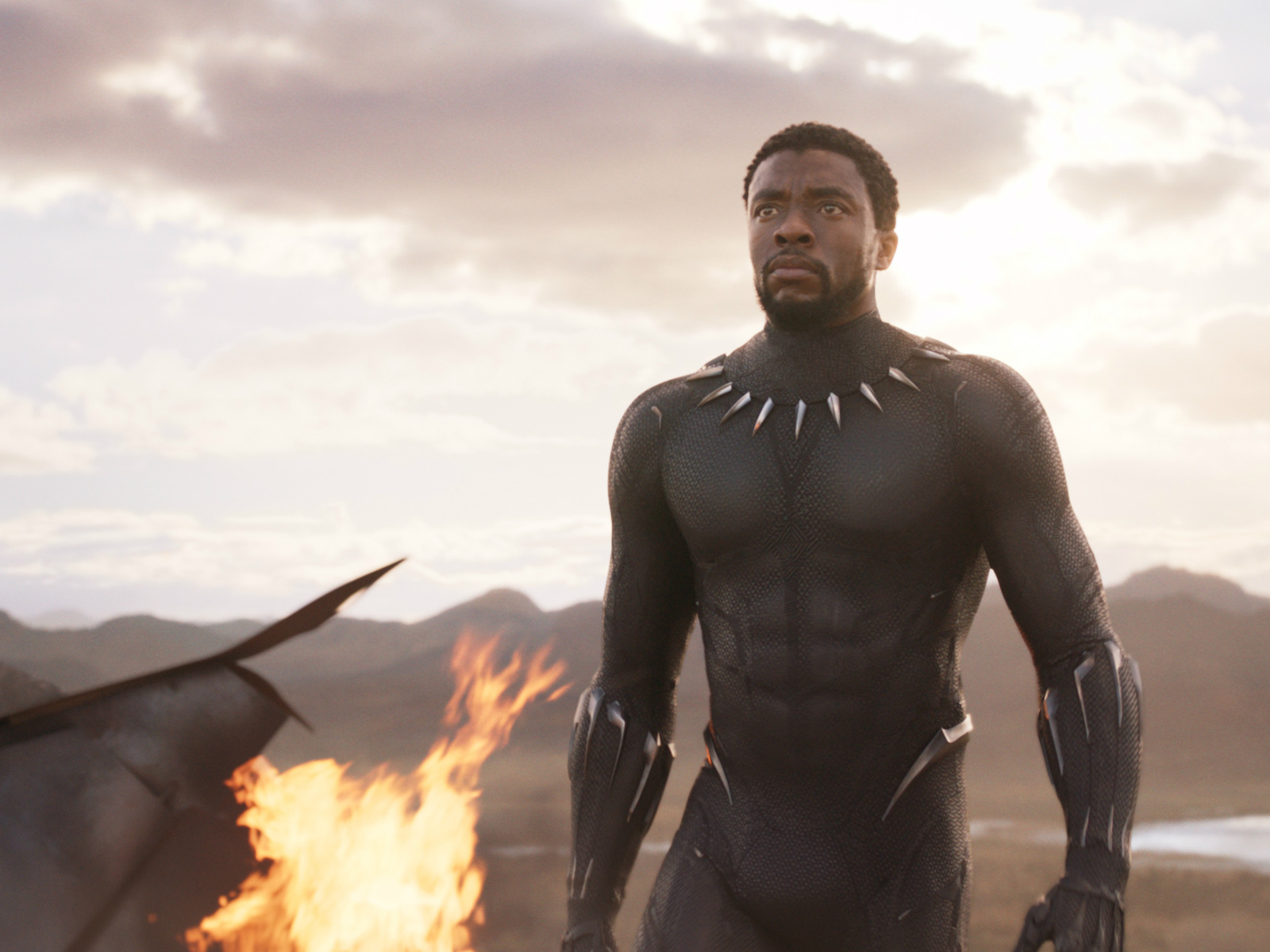 black-panther-t-challa-2018-e3.jpg
