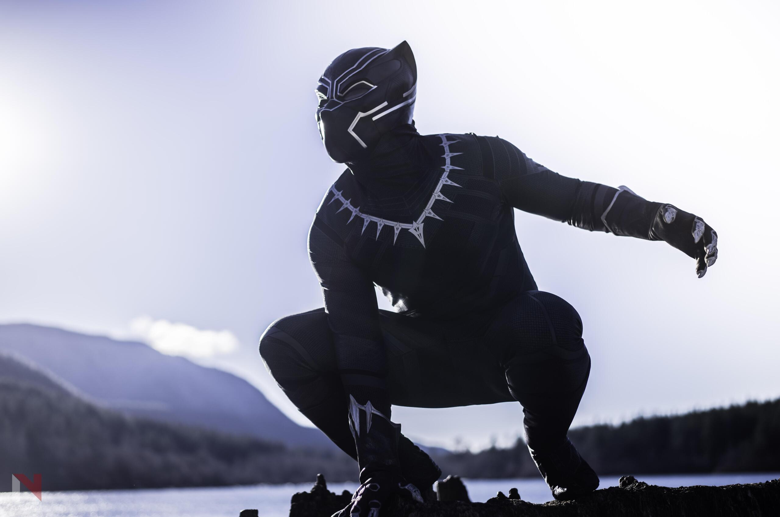 2560x1700 Black Panther The Protector Of Wakanda Chromebook Pixel Hd 4k Wallpapers Images Backgrounds Photos And Pictures
