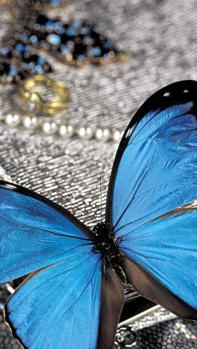 blue-butterfly-on-pearls.jpg