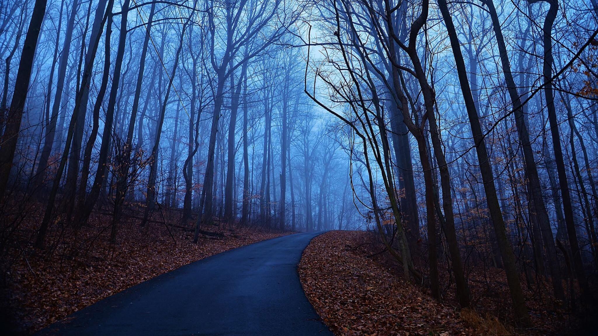 blue road nature photo - photo #7