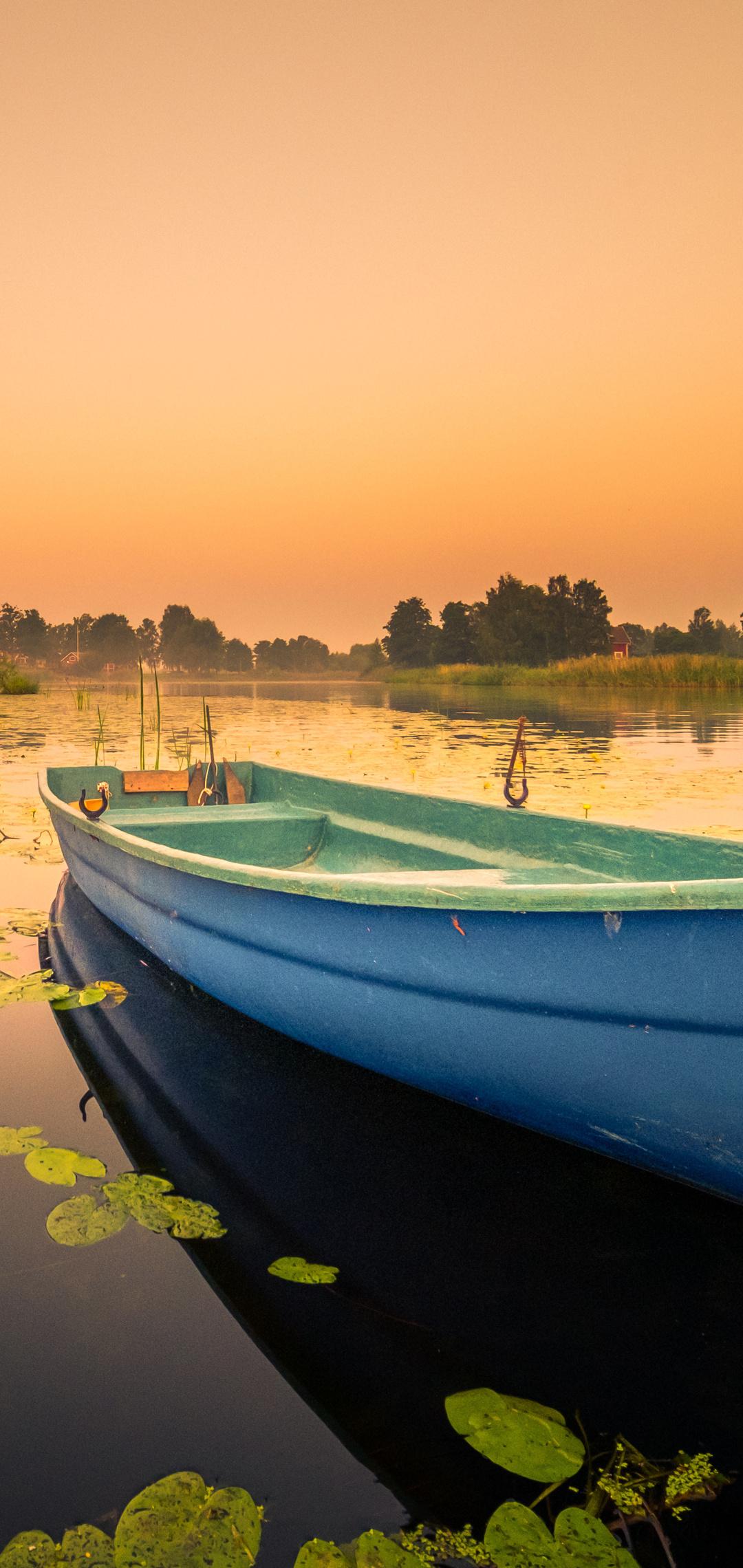 boat-lily-water-lake-7e.jpg