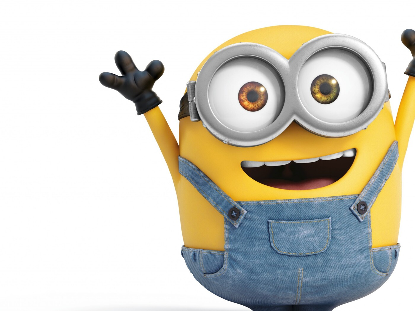 Pictures of all the minions