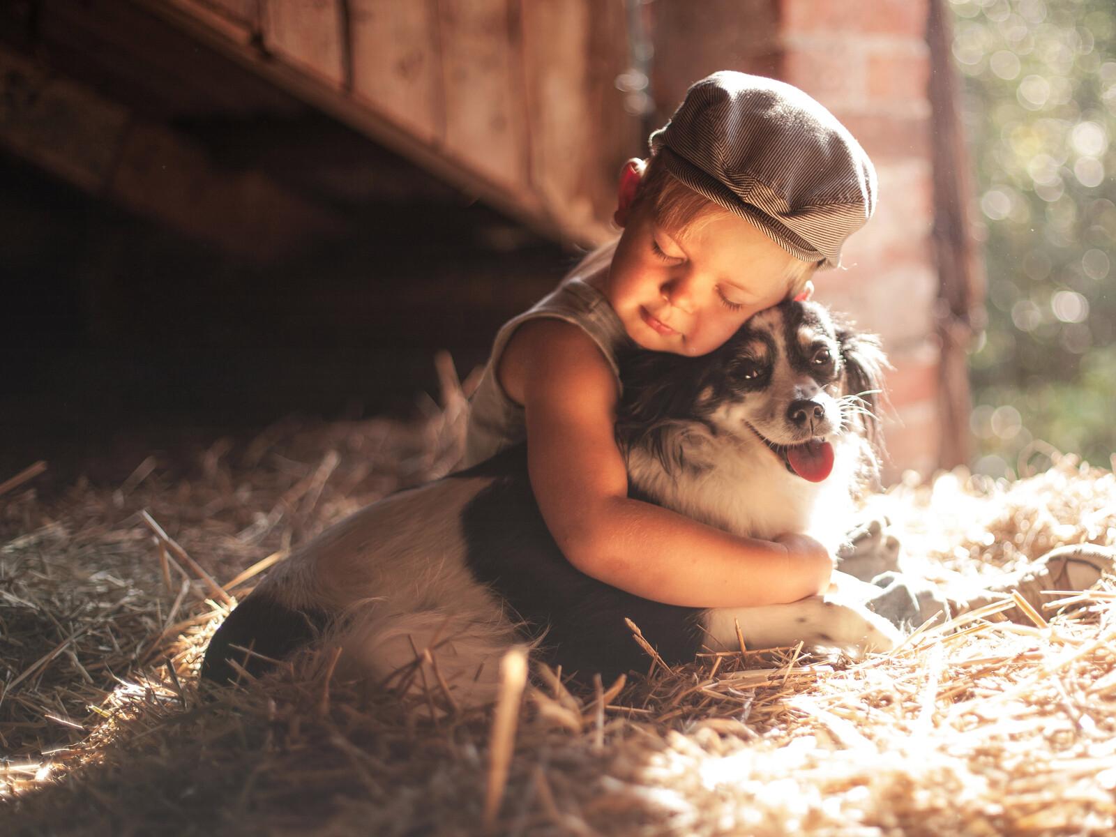 boy-outdoors-hugging-dog-5k-5u.jpg