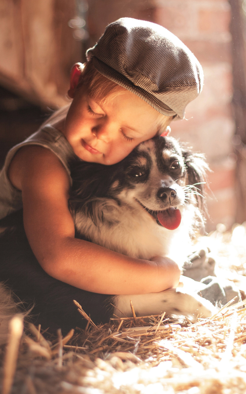 800x1280 boy outdoors hugging dog 5k nexus 7samsung galaxy tab 10 boy outdoors hugging dog 5k 5ug voltagebd Choice Image