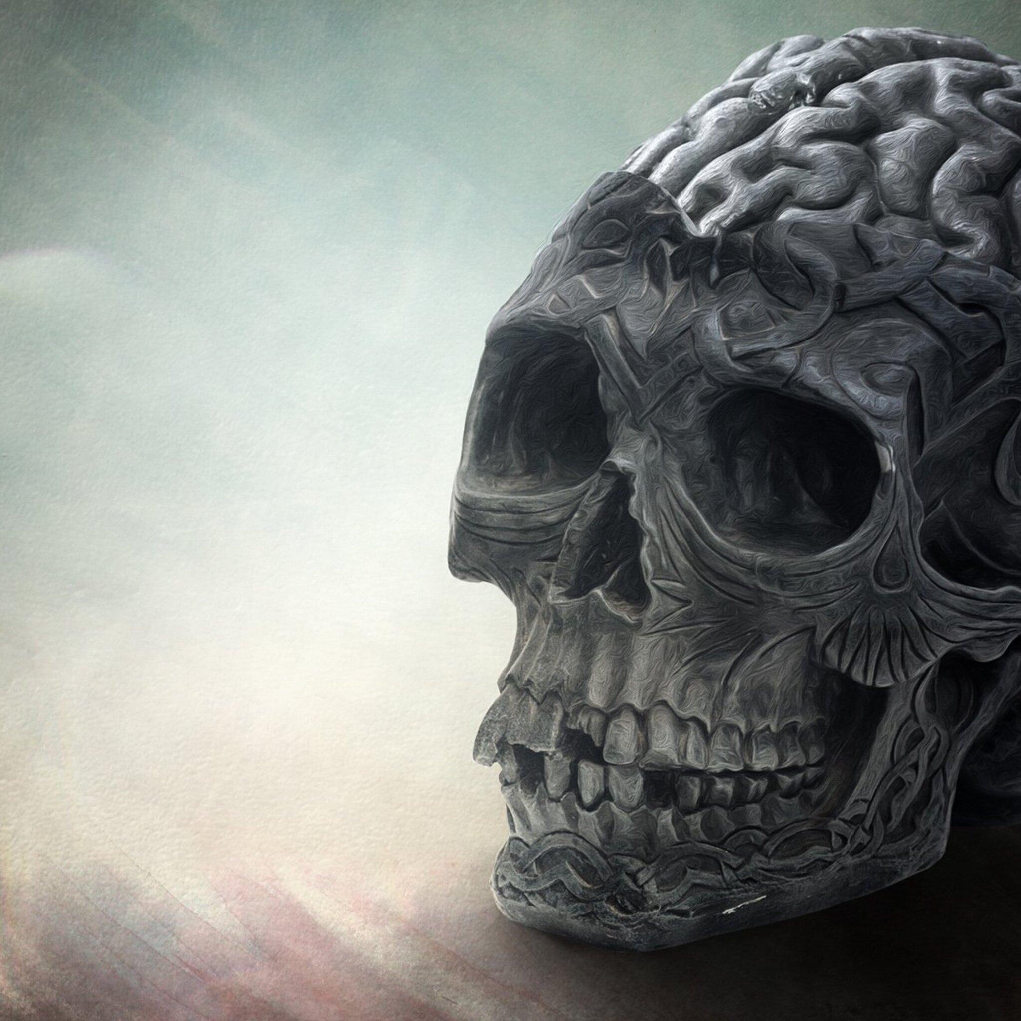brain-skull.jpg
