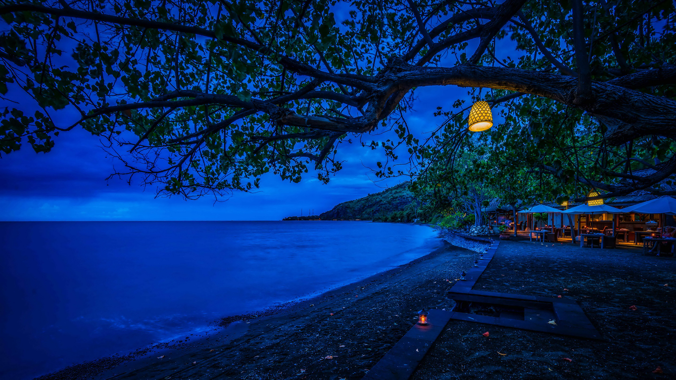 1366x768 branches tree night blue cool weather 1366x768 resolution