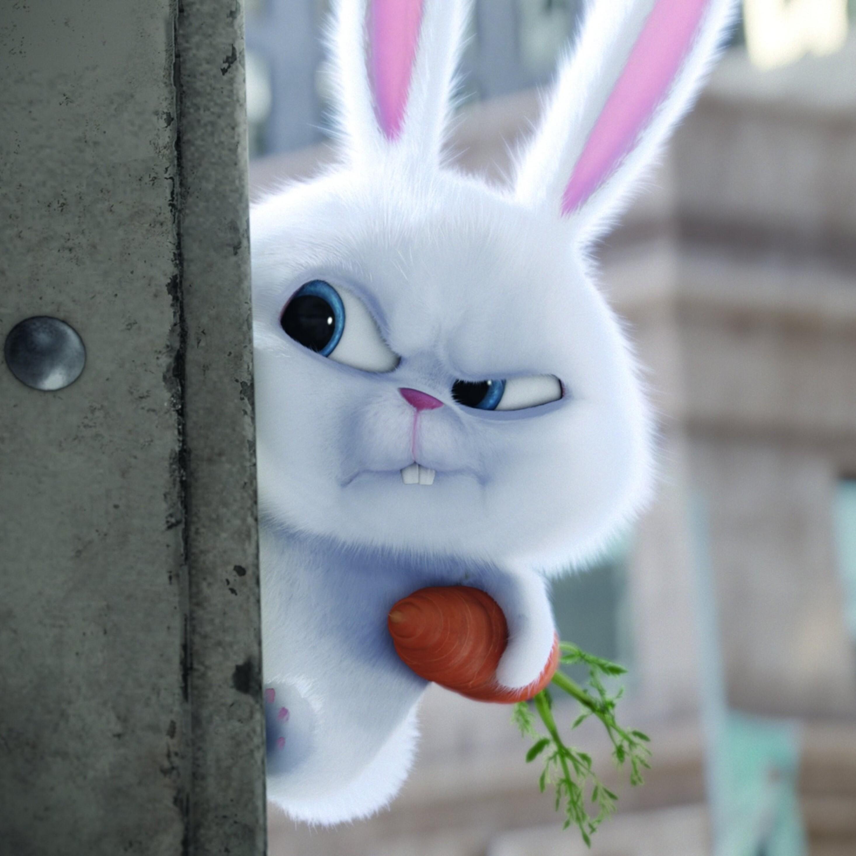 bunny-the-secrete-life-of-pets-movie.jpg