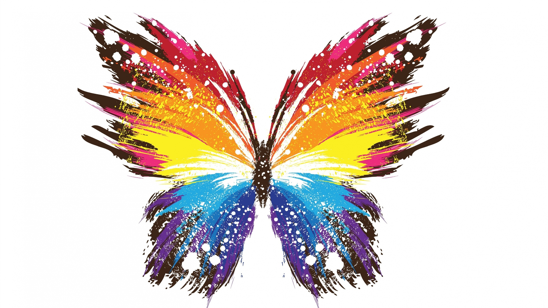 1920x1080 Butterfly Abstract Colorful Laptop Full Hd 1080p