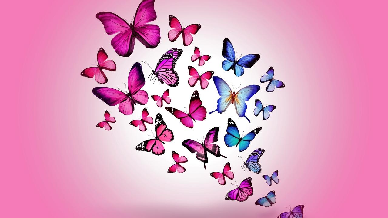 butterfly-art-2.jpg