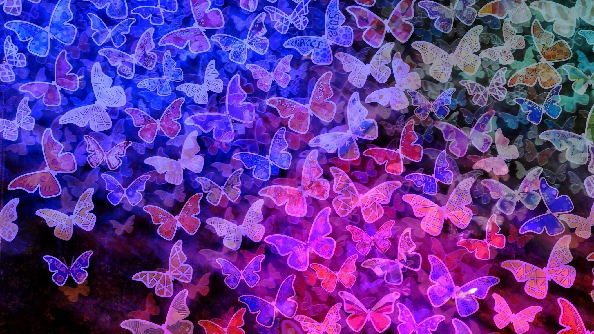 butterfly-background.jpg