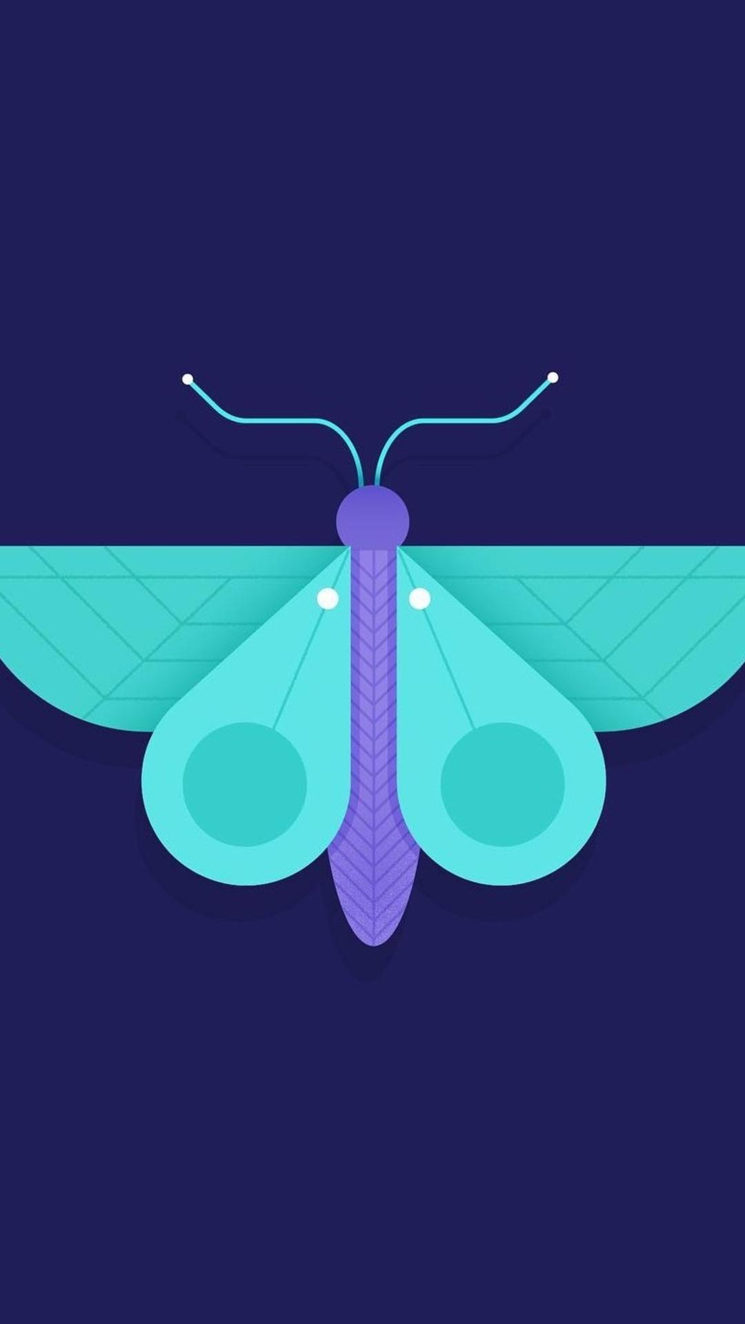 butterfly-minimalism-4e.jpg