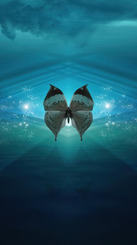 butterfly-renaissance-4k-9b.jpg