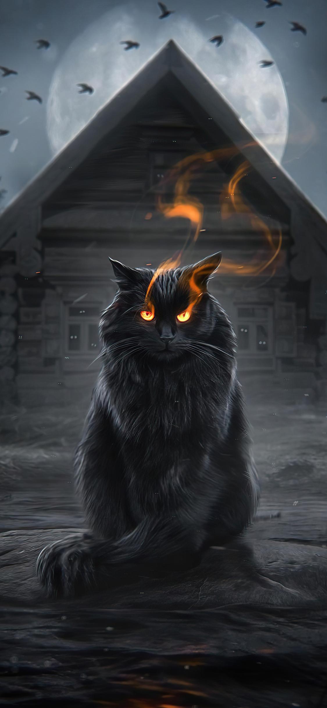 cat-fire-eyes-yx.jpg