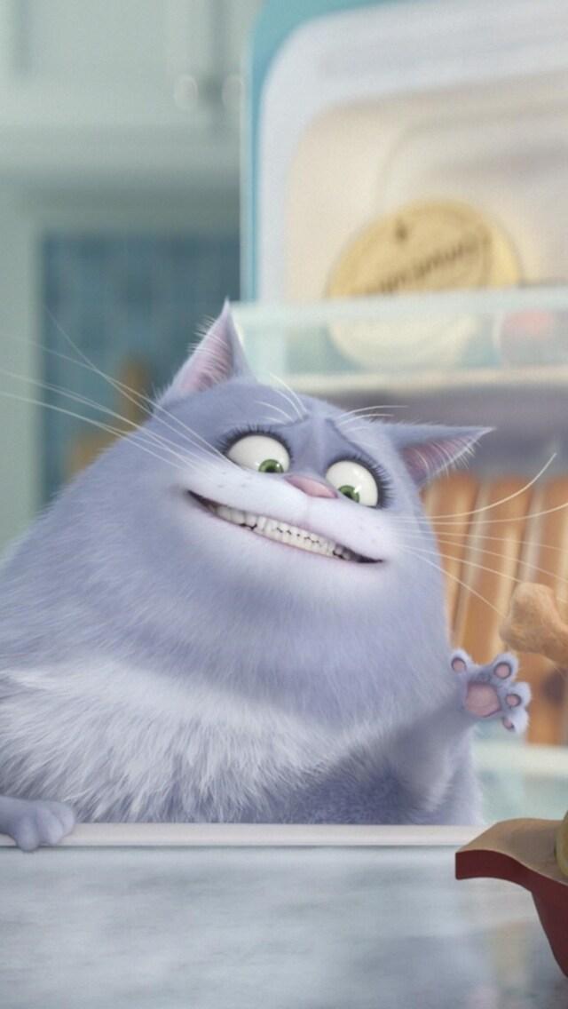 cat-secrete-life-of-pets.jpg