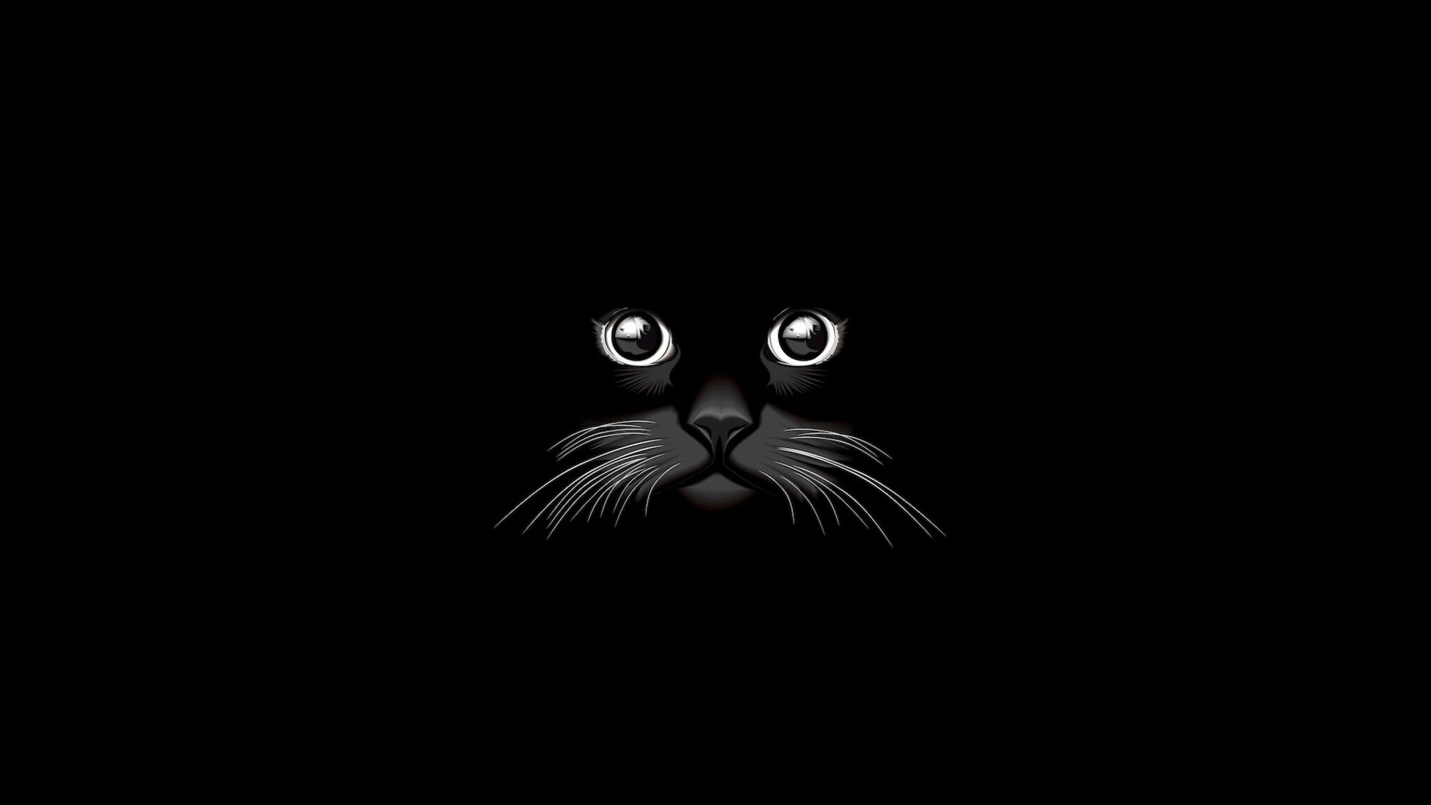 2048x1152 Cat Vector 2048x1152 Resolution HD 4k Wallpapers ...