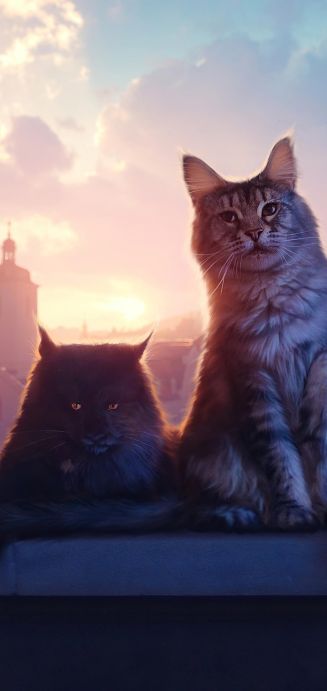 cats-ik.jpg