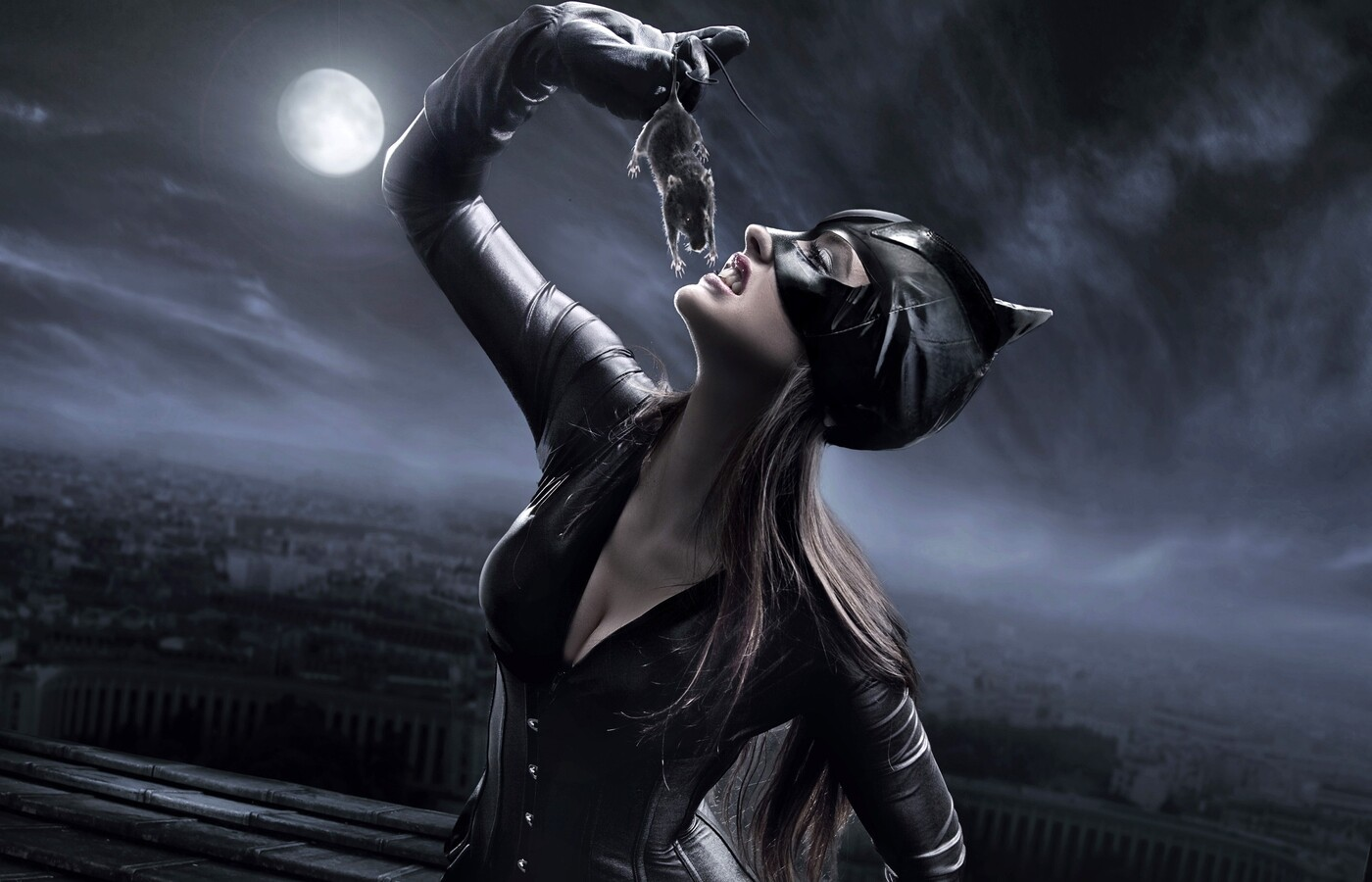 catwoman-concept.jpg