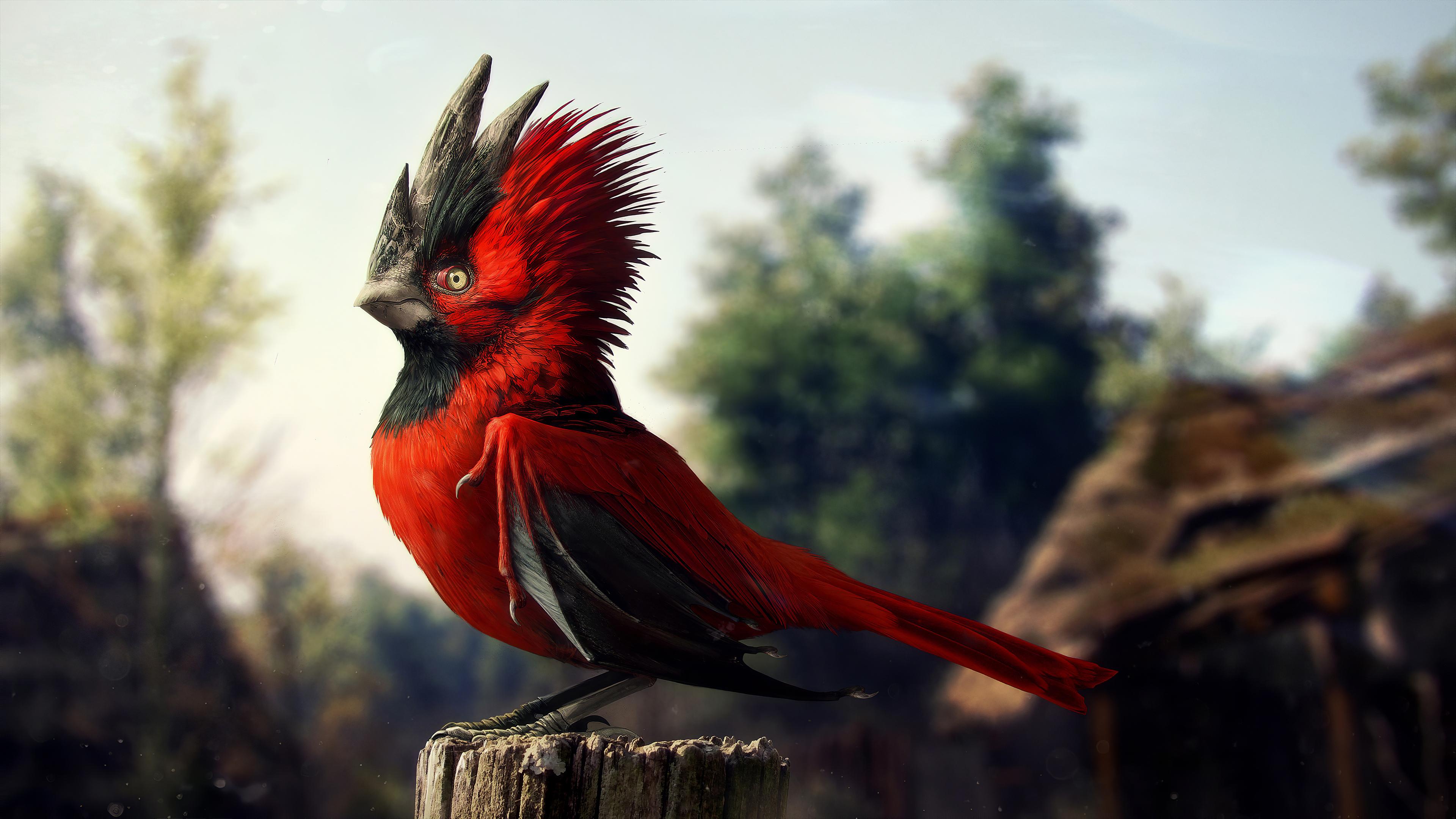 cgi-bird-5k-wk.jpg