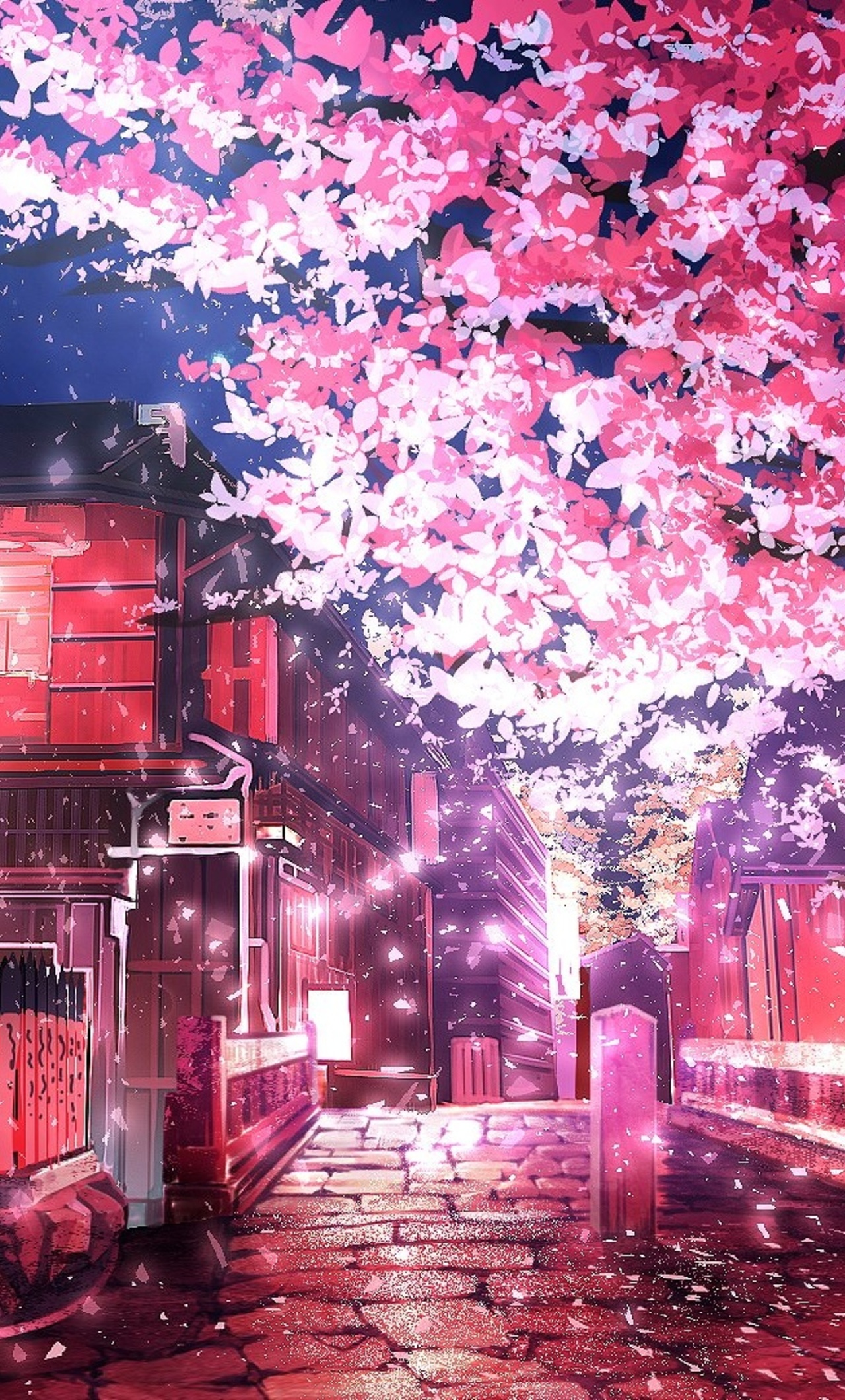 1280x2120 Cherry Tree Anime Iphone 6 Hd 4k Wallpapers Images Backgrounds Photos And Pictures