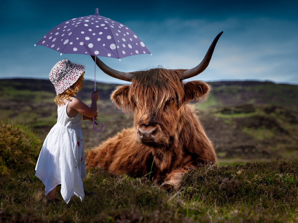 child-cow-umbrella-5k-6d.jpg