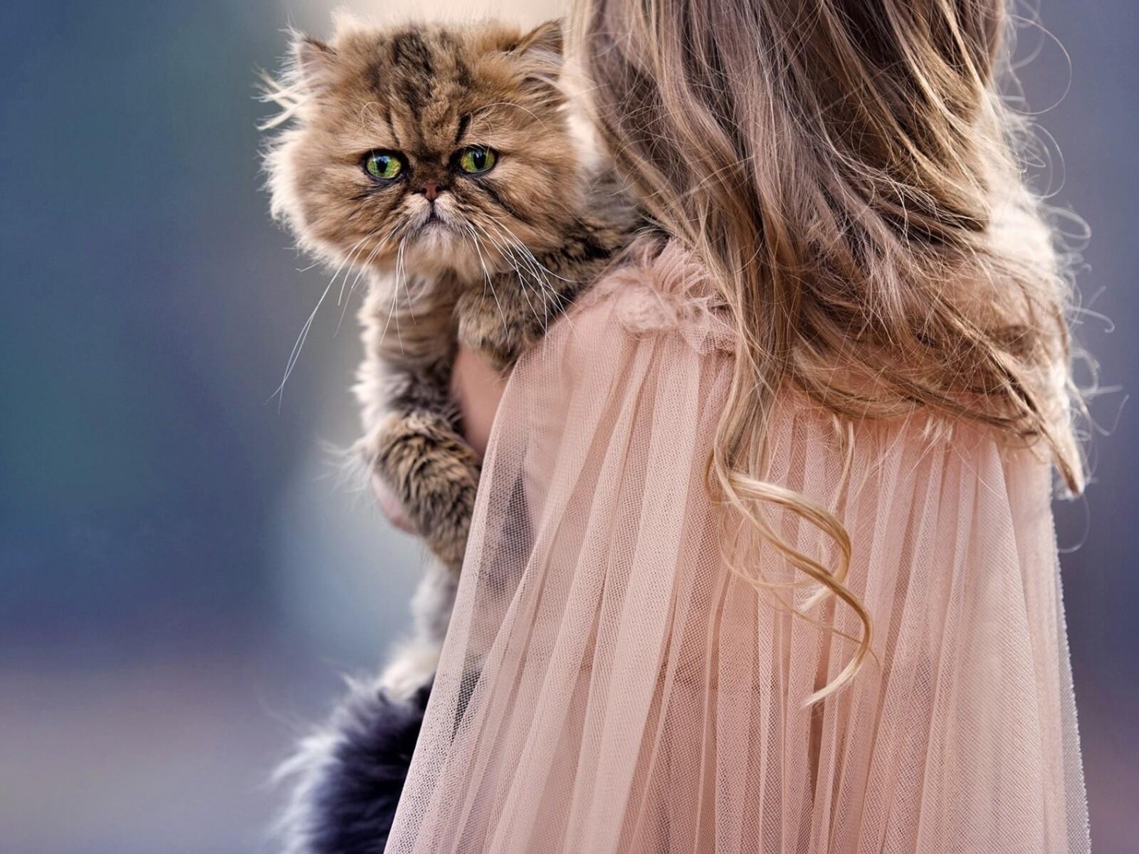 children-and-cat-cute-sd.jpg