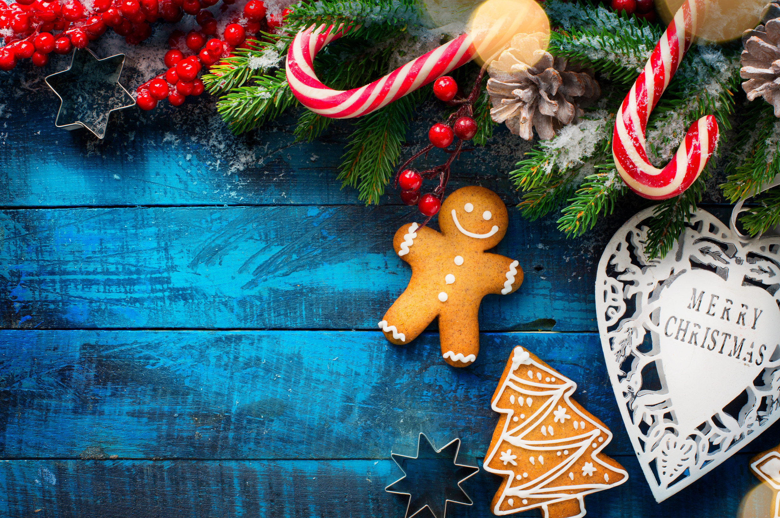 christmas berry cookies branches n2