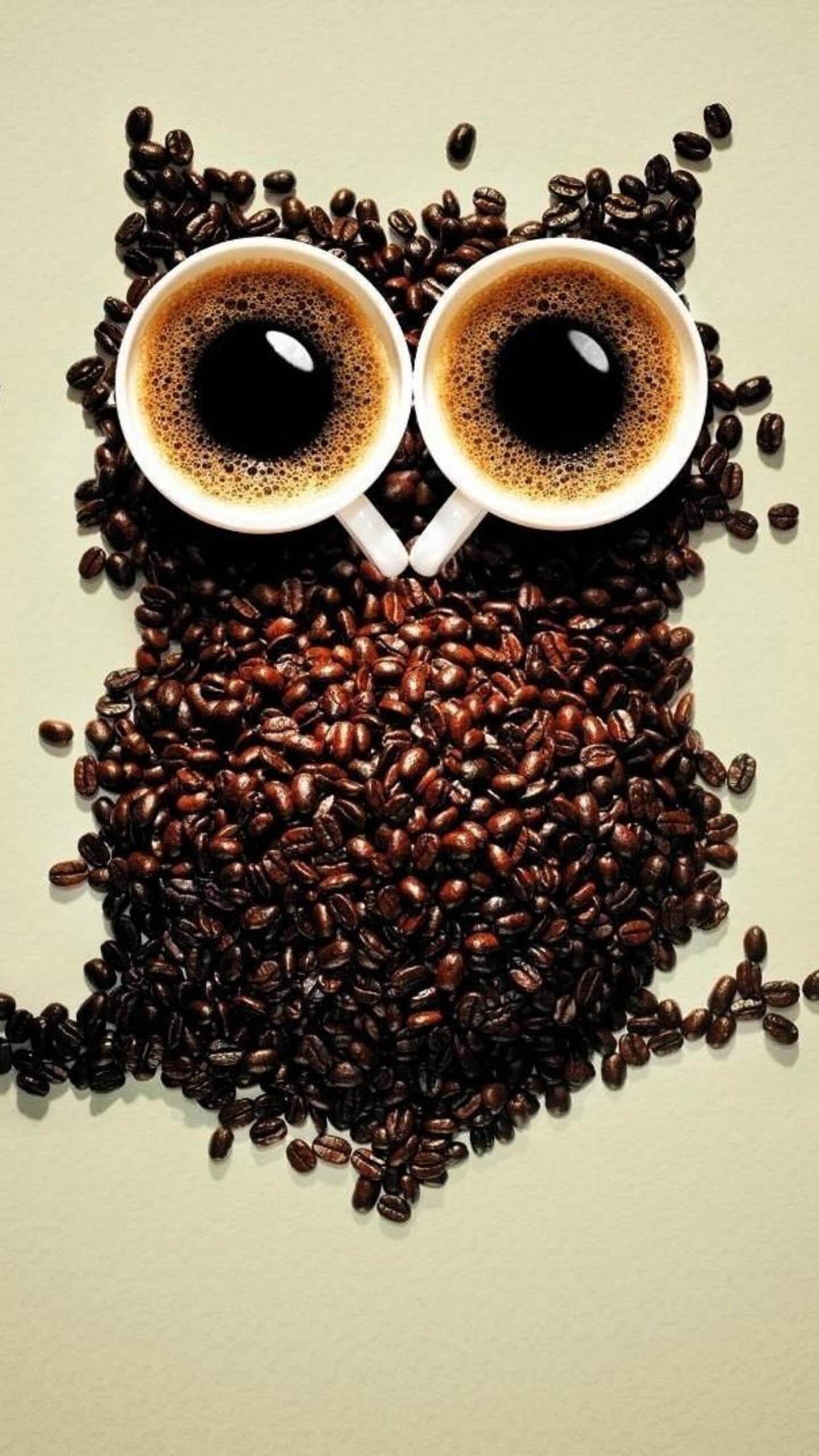 1440x2560 Coffee Beans Owl Art Samsung Galaxy S6 S7 Google Pixel Xl Nexus 6 6p Lg G5 Hd 4k Wallpapers Images Backgrounds Photos And Pictures