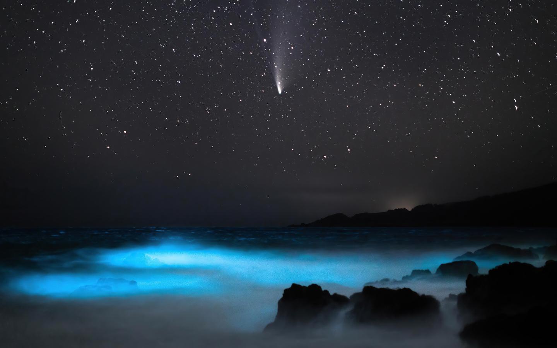 comet-neowise-4k-uy.jpg