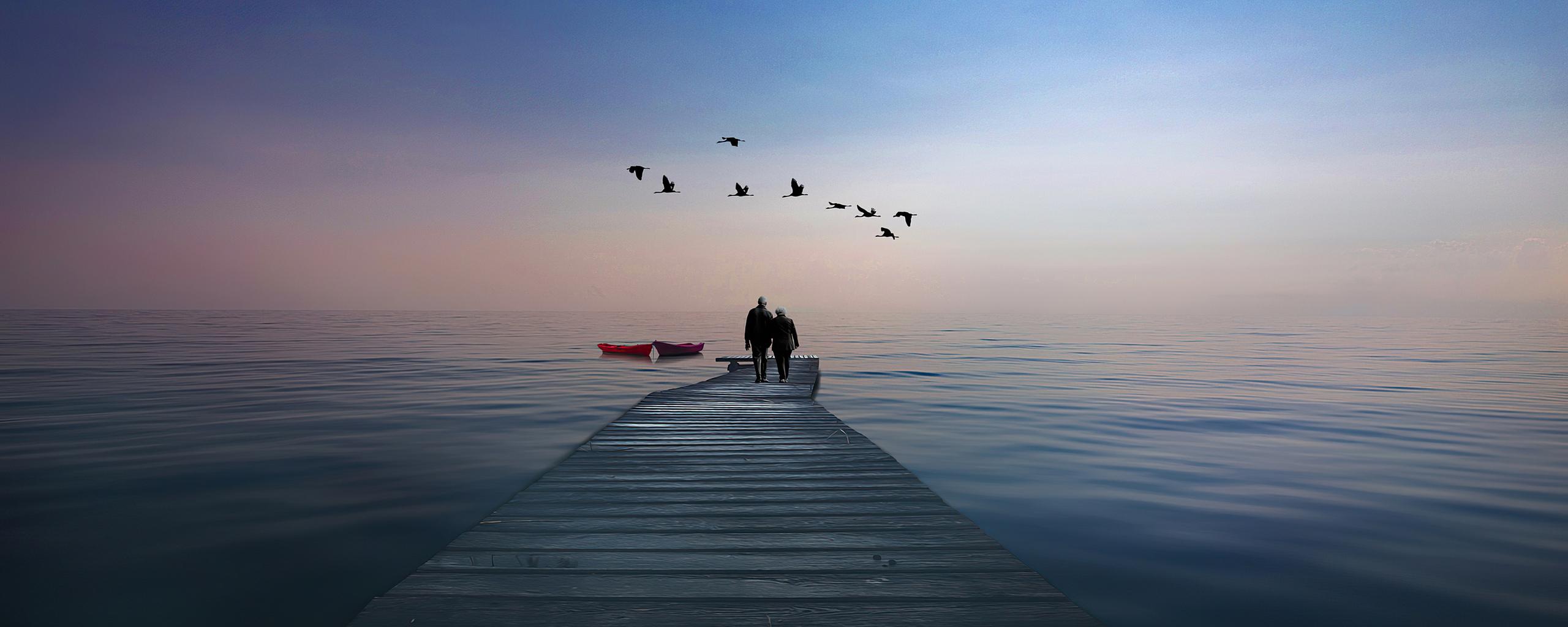 couple-boat-birds-4k-5q.jpg