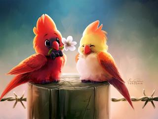 cute-birds-romance-4k-2r.jpg