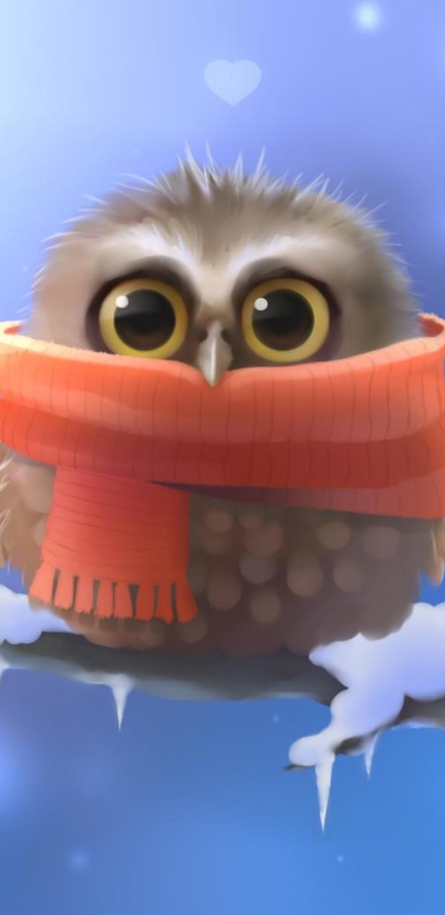 cute-owl.jpg