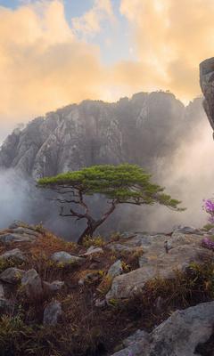 daedunsan-south-korea-s1.jpg