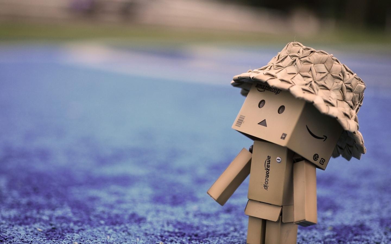 danbo-cardboard-hat-walk.jpg