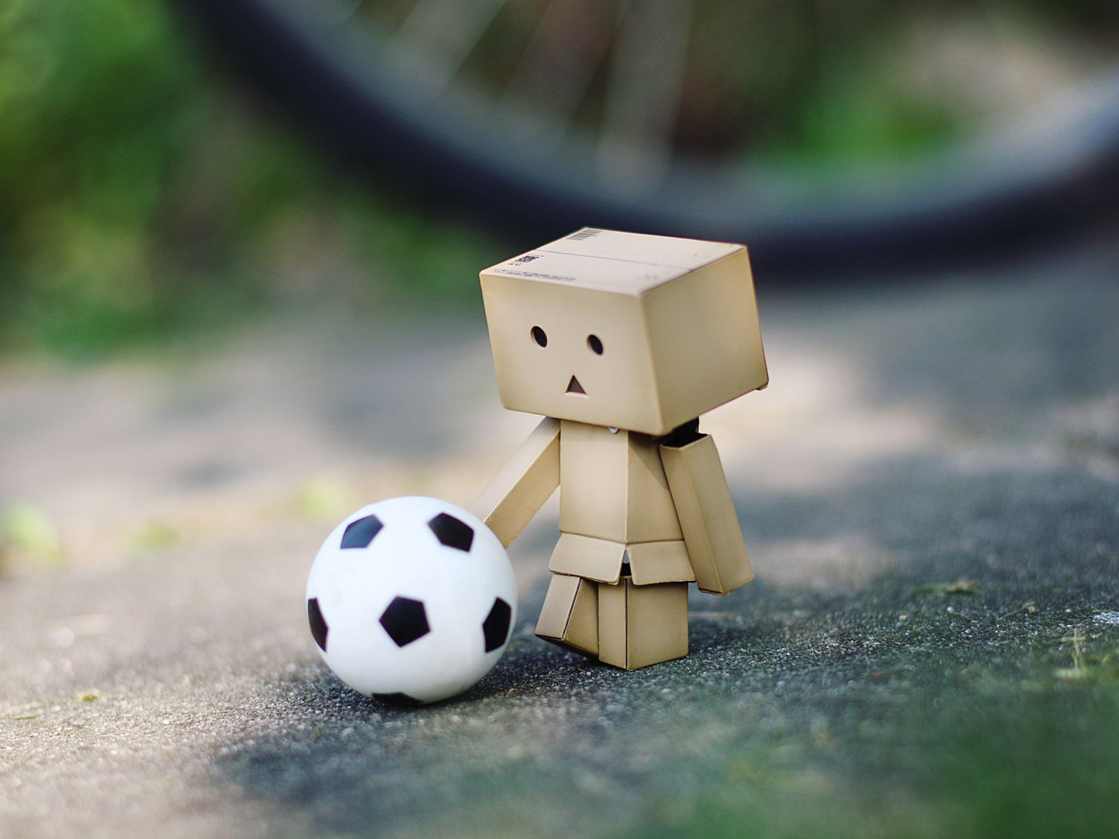 danbo-soccer-fan-wide.jpg