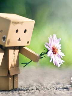 danbo-with-flower-pic.jpg