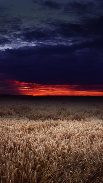 dark-field-covered-by-clouds-sunset-5k-51.jpg