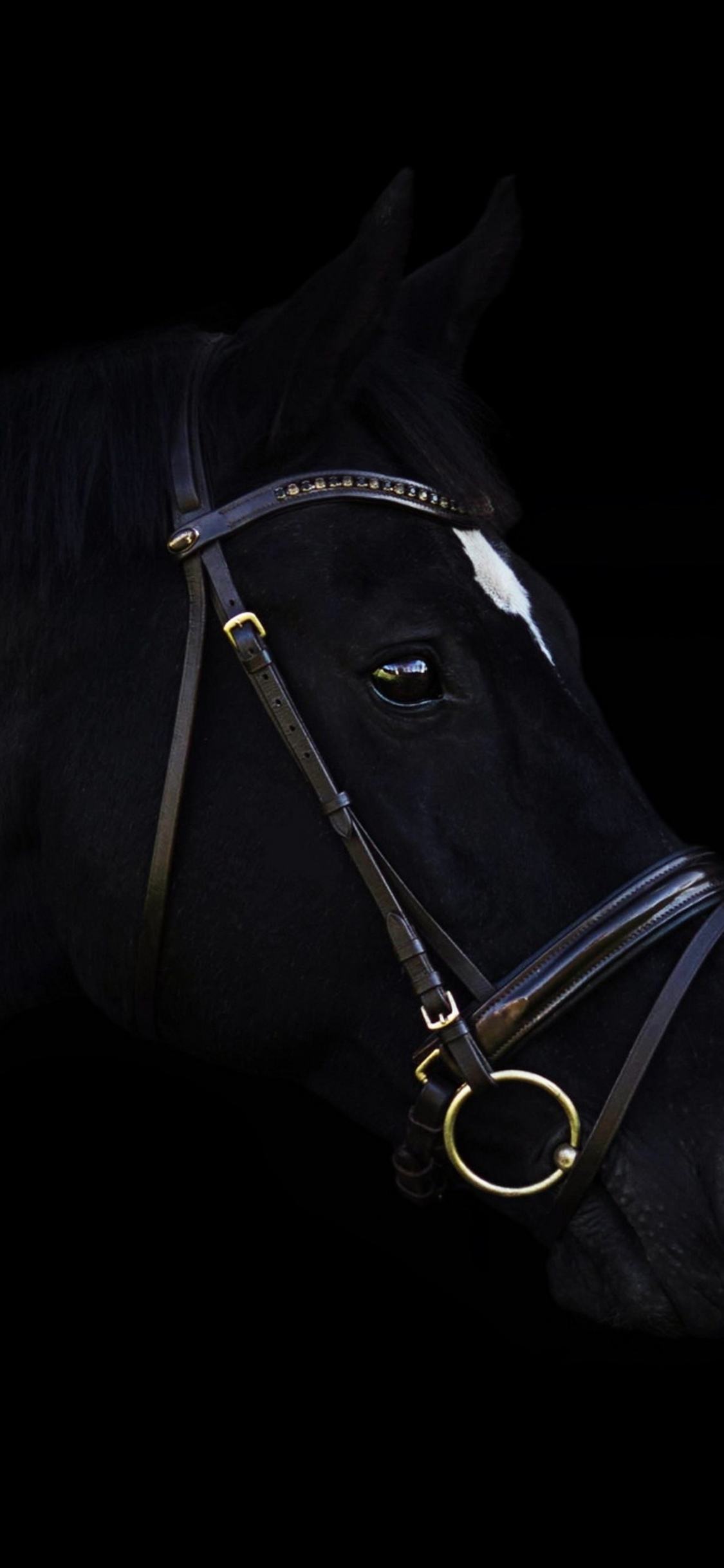 1125x2436 Dark Horse Iphone XIphone 10 HD 4k Wallpapers Images