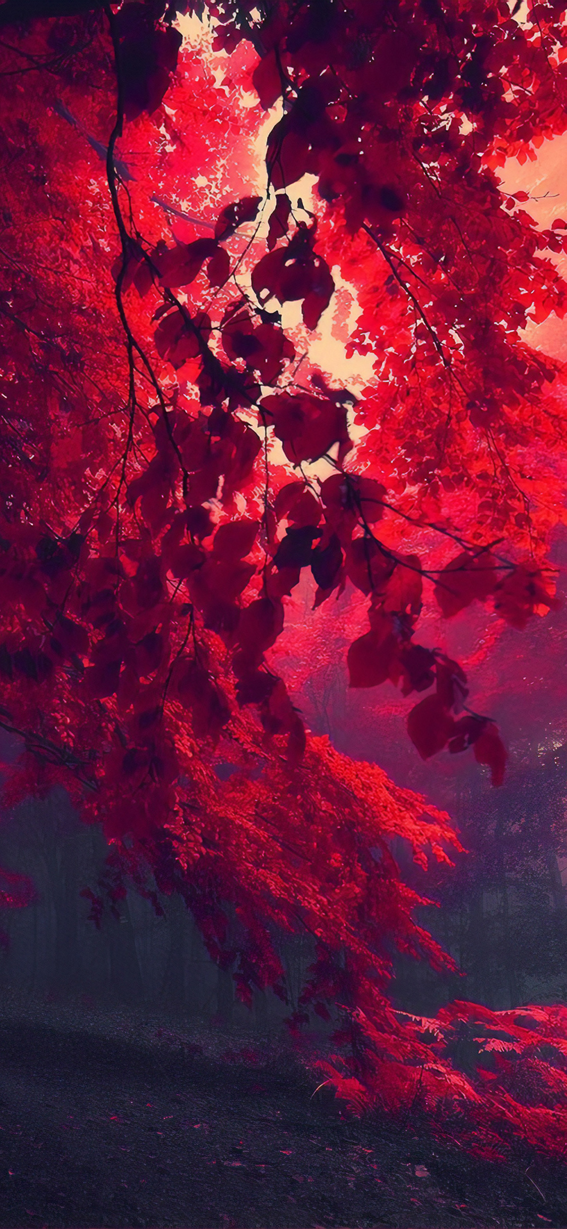 1125x2436 Dark Red Autumn Forest Iphone Xs Iphone 10 Iphone X Hd 4k Wallpapers Images Backgrounds Photos And Pictures