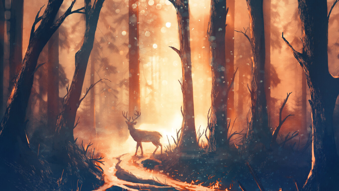 1360x768 Deer Forest Sunbeams Laptop Hd Hd 4k Wallpapers Images Backgrounds Photos And Pictures