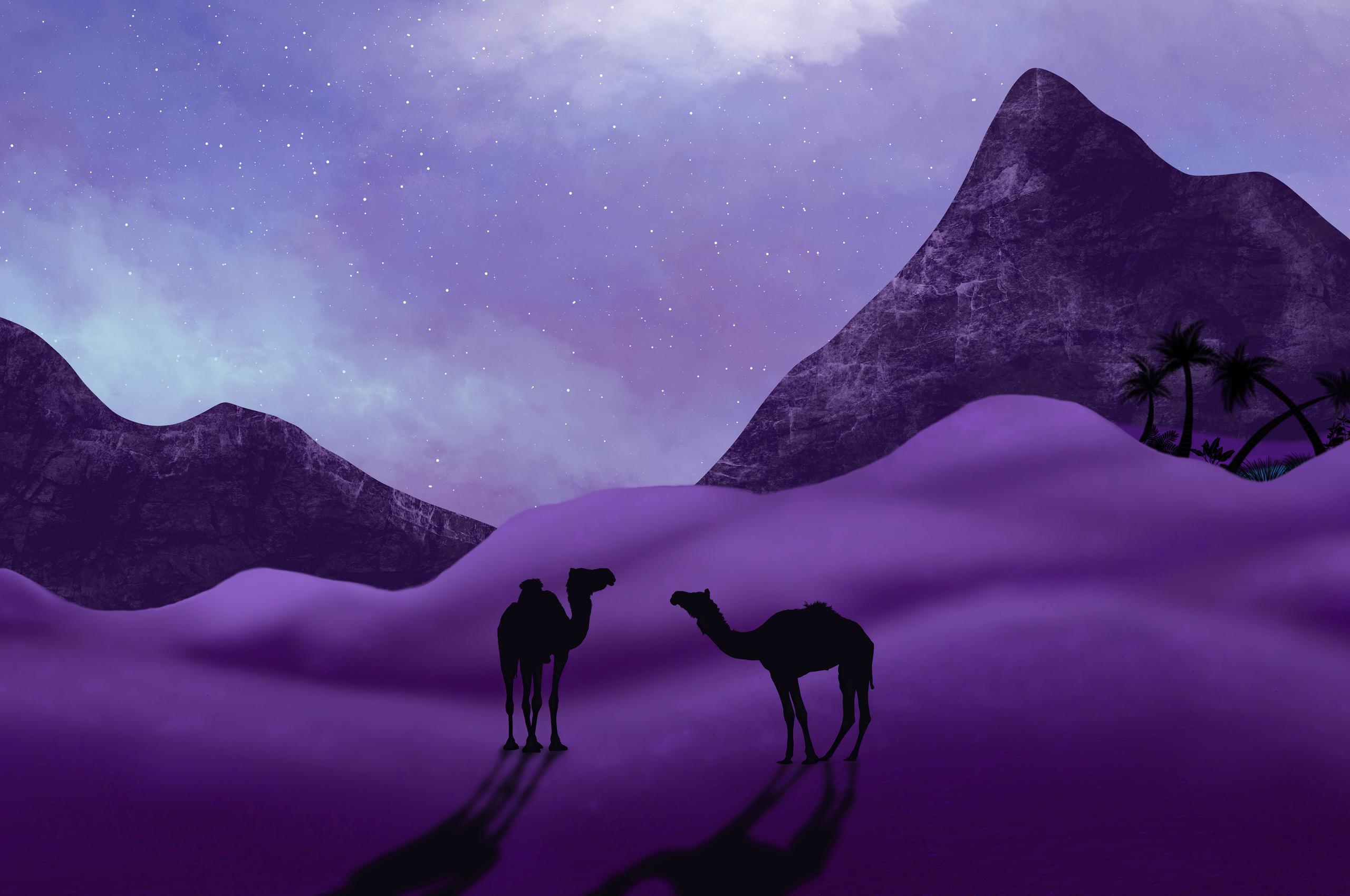 desert-camels-minimal-5k-d0.jpg