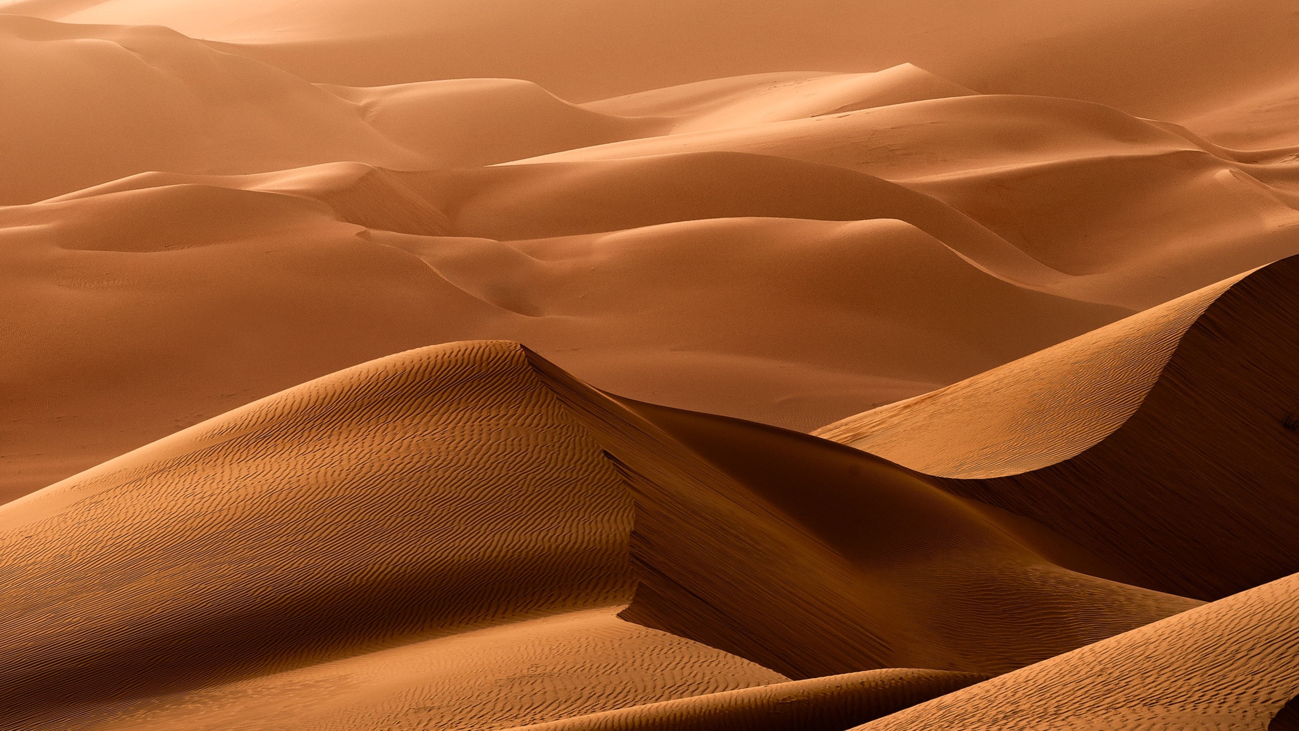 барханы пустыня дюны  № 1291871 бесплатно