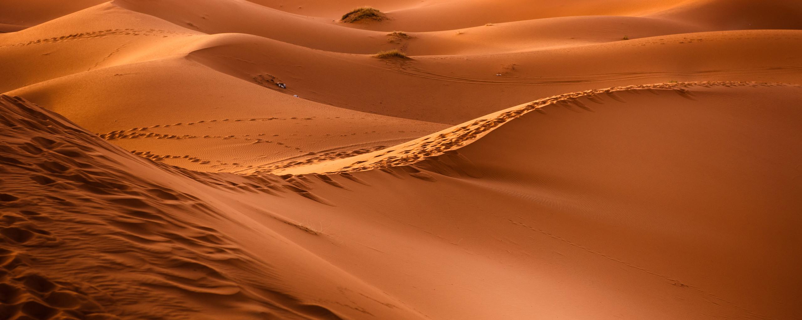 dessert-sand-dunes-8k-go.jpg