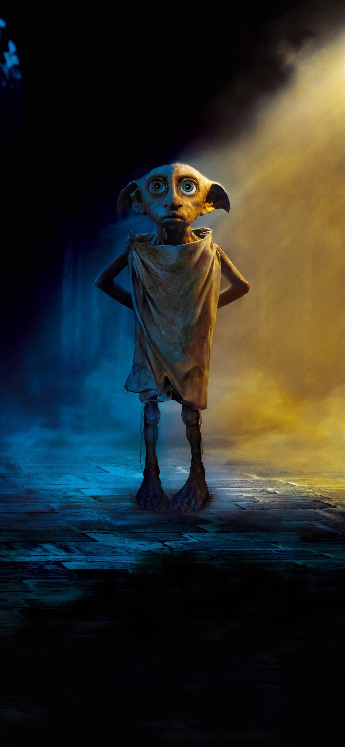 Must see Wallpaper Harry Potter Ios - dobby-the-house-elf-harry-potter-a9-1125x2436  Perfect Image Reference_983362.jpg