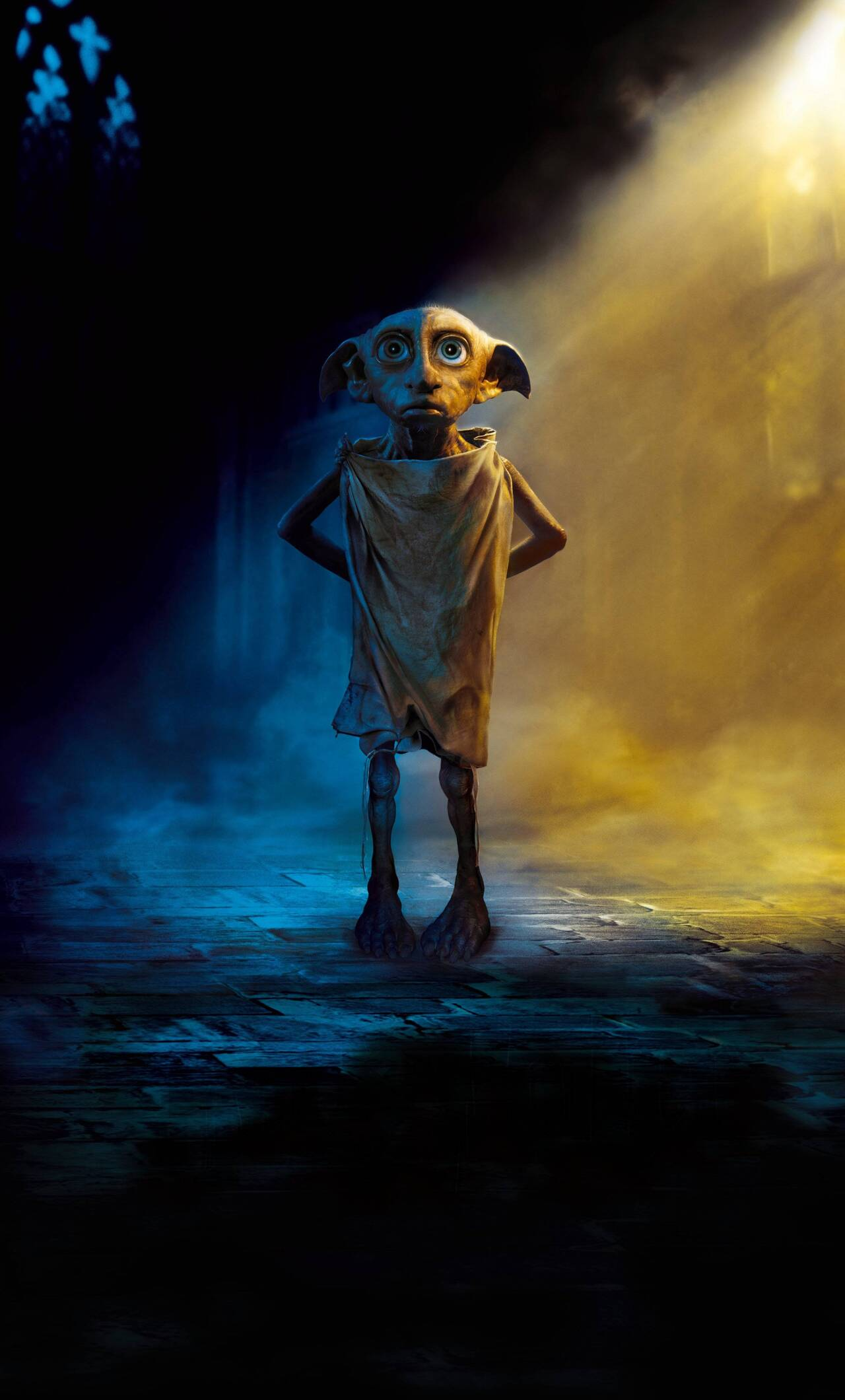 Simple Wallpaper Harry Potter Iphone 6 - dobby-the-house-elf-harry-potter-a9-1280x2120  Pic_295062.jpg
